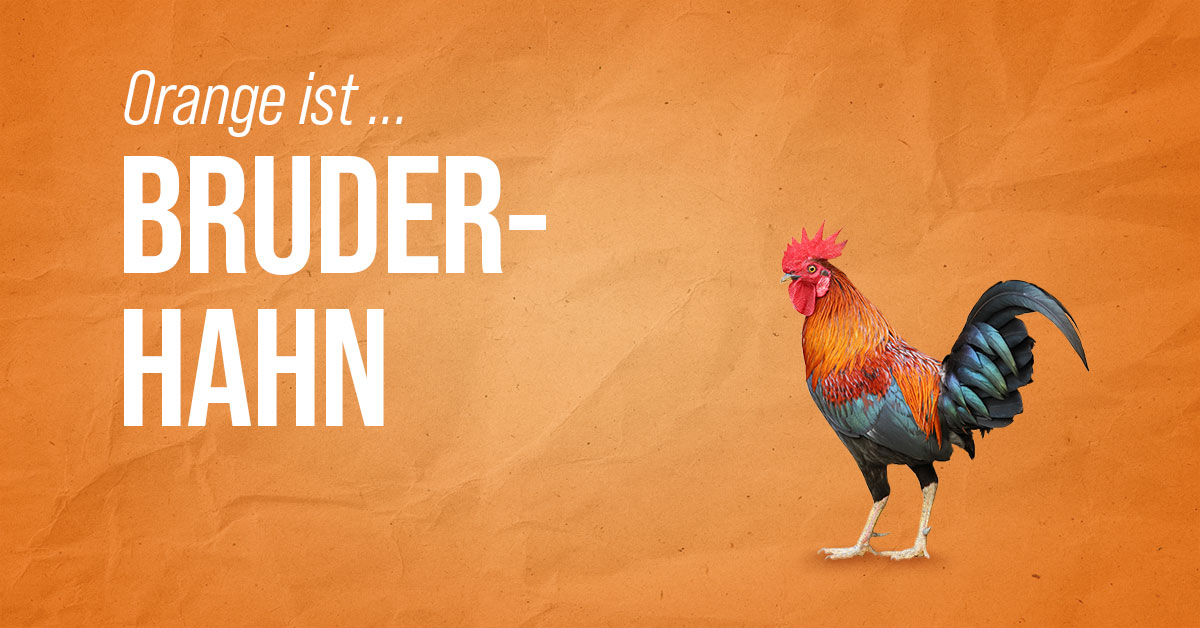 BaeckerPeter_Bruderhahn_2000x1047